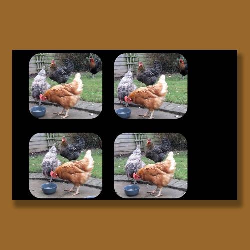 viewmaster slide
