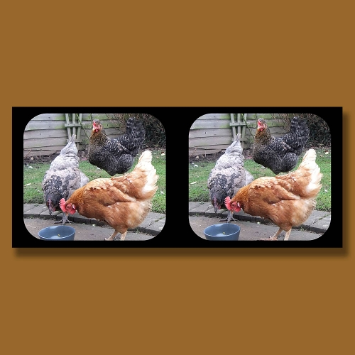 View-Master stereo pair